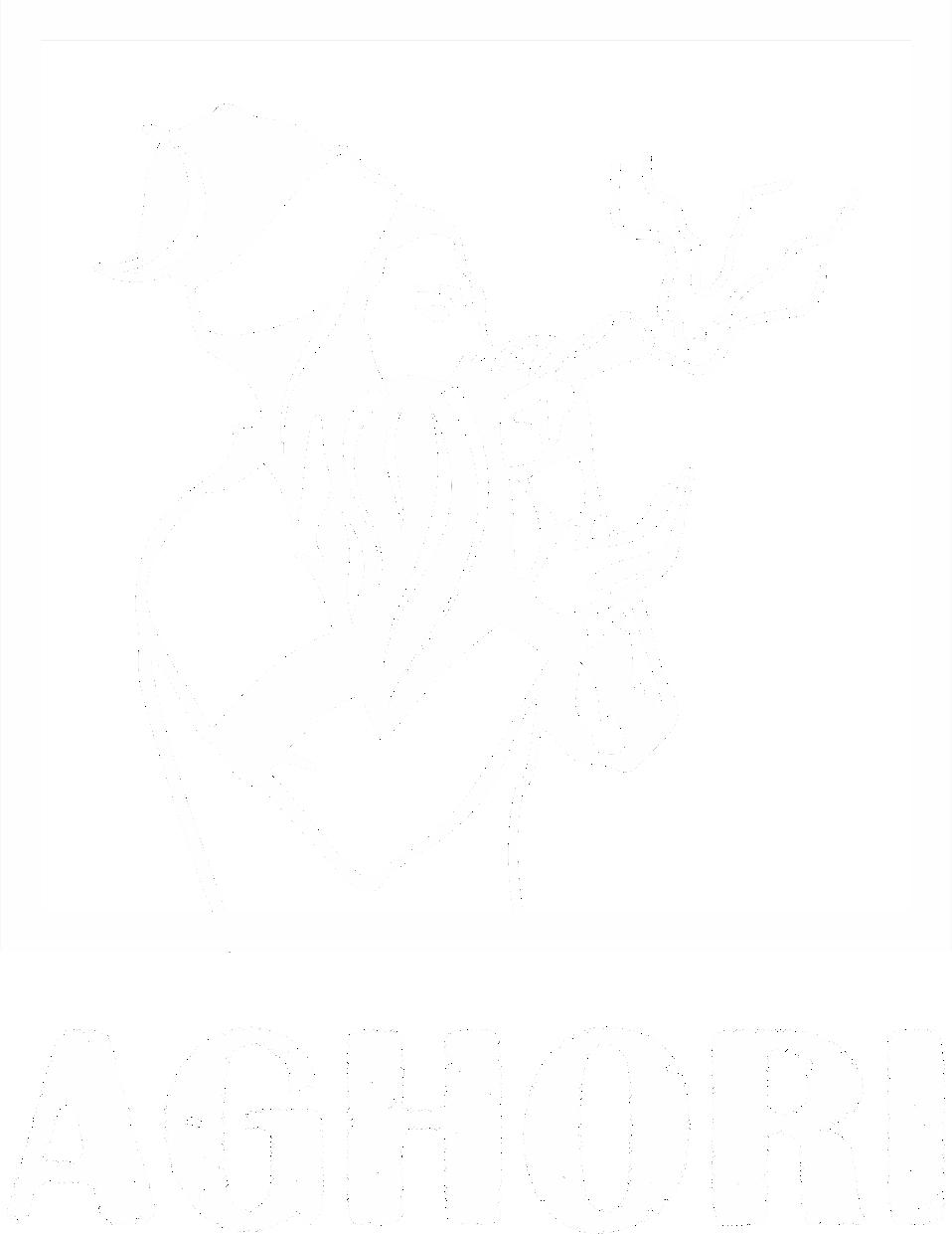 Aghori Media House's Company logo